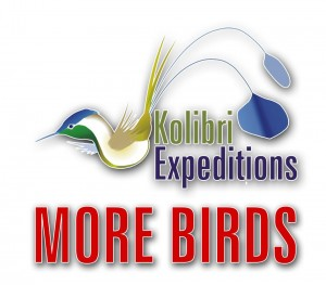 Kolibri Expeditions Logo