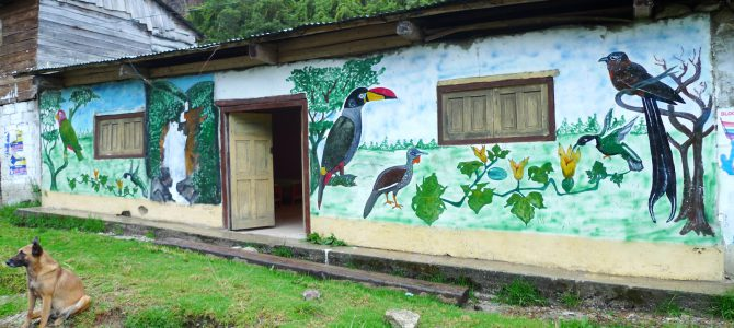 The poor man's Manu road gets a birding lodge
