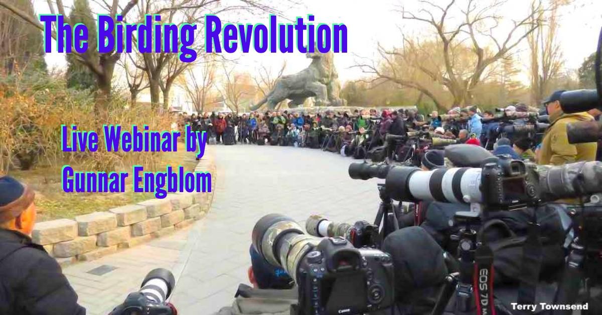 Birding Revolution Webinar Highlights