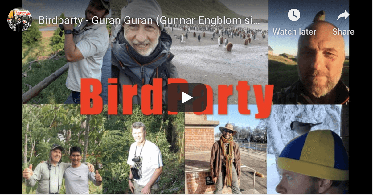 Johnny-the-birder, gets ditched by his wife when going to a Birdparty! (Musical Video)